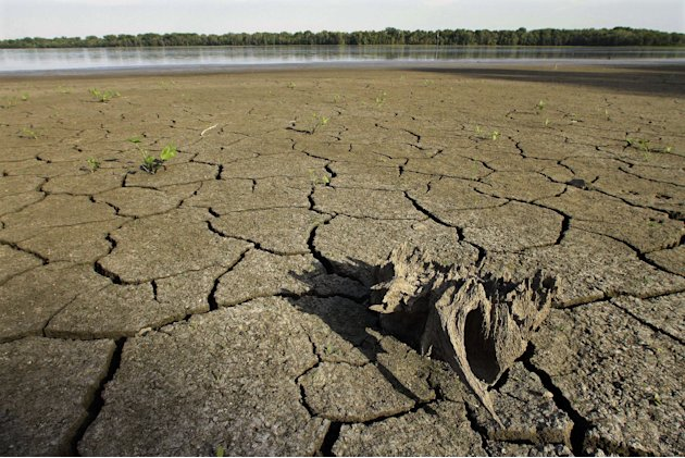 In this Aug. 22, 2012, drought condition water levels have taken their toll on the wildlife at Anderson Lake State Fish &amp; wildlife Area near Astoria, Ill. According to the latest drought report releas