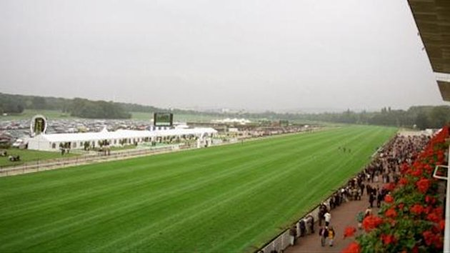 Longchamp course generic