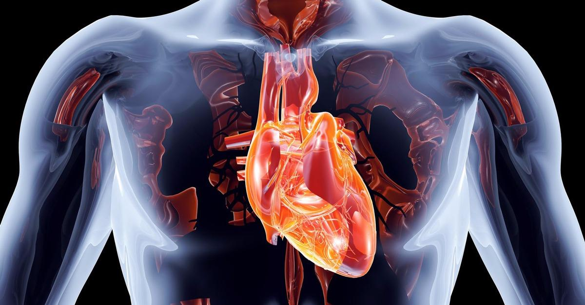 Research Reveals 4 Stages Before A Heart Attack