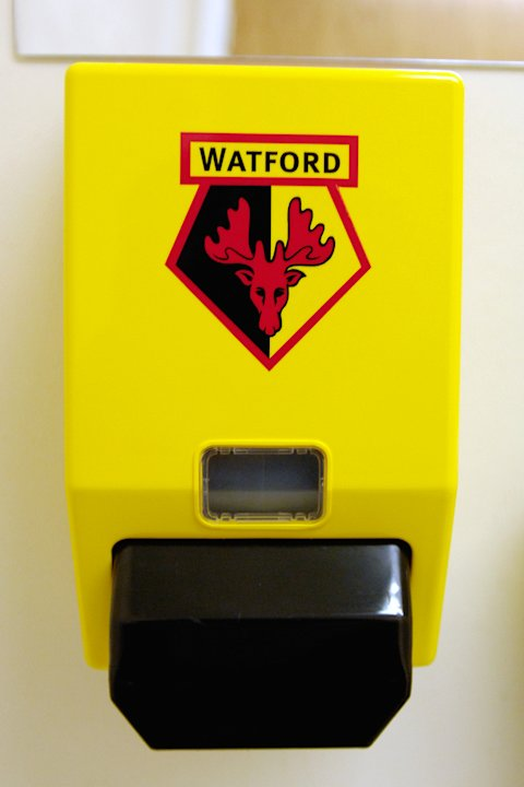 Watford have been sold to the Pozzo family, who also own Udinese and Granada