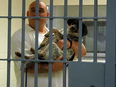 Prisoners Save Pooches From Doggie Death Row
