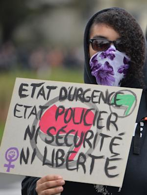 A demonstrator in Rennes on January 23, 2016 holds …