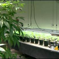 Marijuana Industry Having Impact On Colorado Power Supply