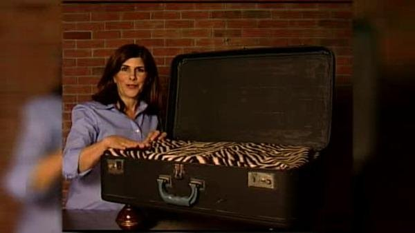 Mrs. Fixit: Suitcase Dog Bed