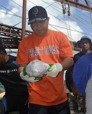 Boat filled with protected species hits coral reef