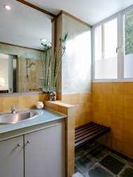 A bamboo plant sits in the bathroom.