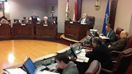 Summerside council did not release the full report into the planning of the failed Michael Jackson tribute concert.