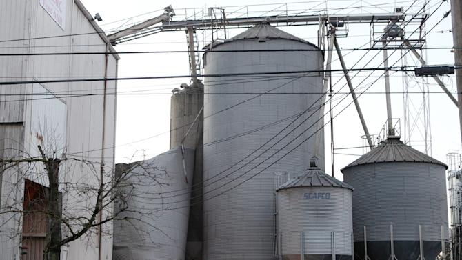 Emergency responders from the South Pierce Fire Department respond to a grain processing feed mill owned by Wilcox Farms in downtown Roy, Wash., Monday, Dec. 2, 2013, after one of its silos collapsed. Three workers escaped, but one is still unaccounted for. (AP Photo/The Olympian, Steve Bloom)