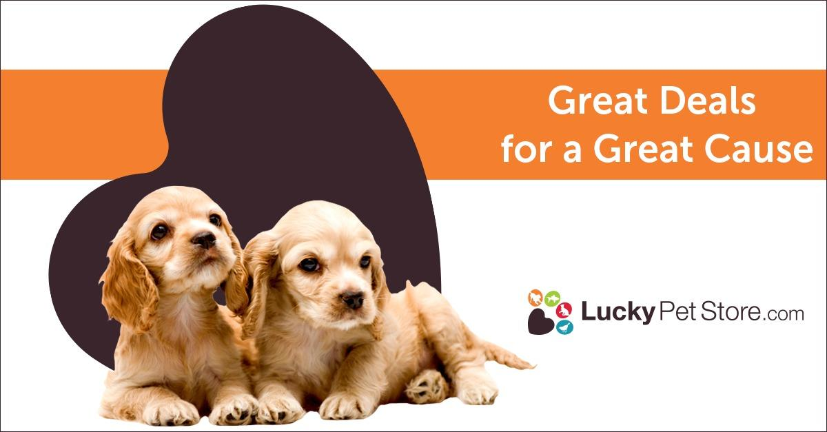 Find Incredible Savings on Dog Products