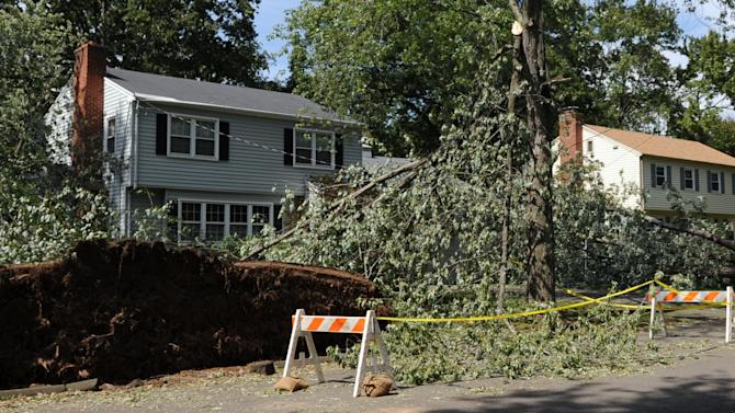 Two large fallen trees flank a house on Garfield Avenue in North Haven, Conn., Wednesday, Aug. 31, 2011. The trees fell on Sunday, Aug. 28 during Tropical Storm Irene. The house suffered minimal damage, but four days after the storm there was still no electricity in the area.  (AP Photo/Bob Child)