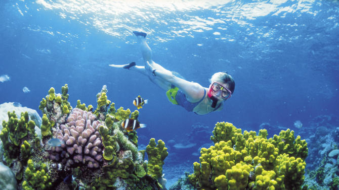 This November, 2002 photo provided by Queensland Tourism, a diver snorkels in the Great Barrier Reef off Australia's Queensland state. Australia announced Thursday, June 14, 2012, the creation of the world's largest network of marine reserves covering 3.1 million square kilometers (1.2 million square miles) of ocean including the entire Coral Sea. Environment Minister Tony Burke said the government expects to pay an estimated 100 million Australian dollars ($100 million) to the fishing industry in compensation for the new restrictions on their operations that will take effect late this year. (AP Photo/Queensland Tourism) EDITORIAL USE ONLY
