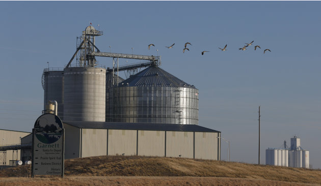 In this Feb. 5, 2013 photo geese fly by the East Kansas Agri-Energy ethanol plant in Garnett, Kan. that suspended production last year.  Corn growers had high hopes going into the 2012 planting season
