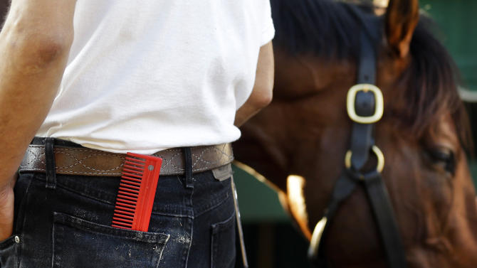 A groom carries a horse comb in his back pocket as he washes Kentucky Derby winner Orb after a workout at Pimlico Race Course in Baltimore, Friday, May 17, 2013. The Preakness Stakes horse race is scheduled to take place May 18. (AP Photo/Patrick Semansky)