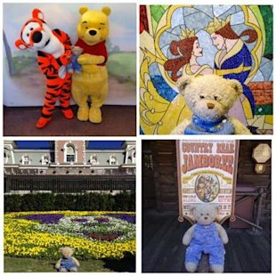 Your Daily Dose of Cute: Disney Cast Members Take Lost Teddy Bear on Adventure