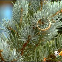 Wedding Band Mystery Continues After Discovery At Vail