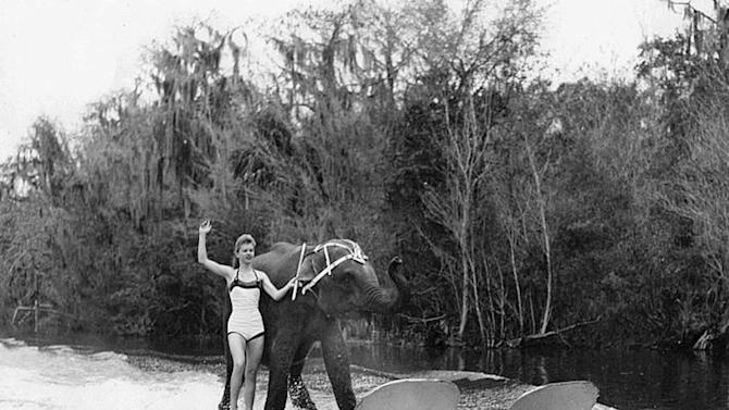 In this undated 1958 photo provided courtesy of Liz Dane, Dane is shown performing her act with Queenie the water skiing elephant. The Valdosta Daily Times reports that 59-year-old Queenie was euthanized Monday, June 2, 2011,  after her health deteriorated. (AP Photo/Courtesy of Liz Dane)