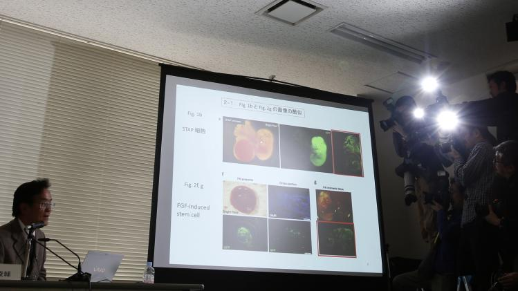 Riken's head of the investigation committee, Shunsuke Ishii, presents a slide show during a news conference in Tokyo