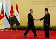 &lt;p&gt;Chinese President Hu Jintao (R) shakes hands with UN Secretary General Ban Ki-moon before a group photo session for the 5th Ministerial Conference of the China-Africa Forum co-operation at the Great Hall of the People in Beijing, on July 19. Hu said China would offer $20 billion in new loans to Africa, as he delivered a speech to a Beijing forum on co-operation with the resource-rich continent.&lt;/p&gt;