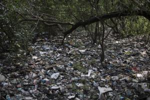 In this May 15, 2014 photo, trash litters a forested …