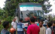 Hutan Tempat Bus Pahala Kencana Nyasar Dulunya Kota Gaib