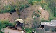 Wild Dogs Kill Boy After Fall At Pittsburgh Zoo