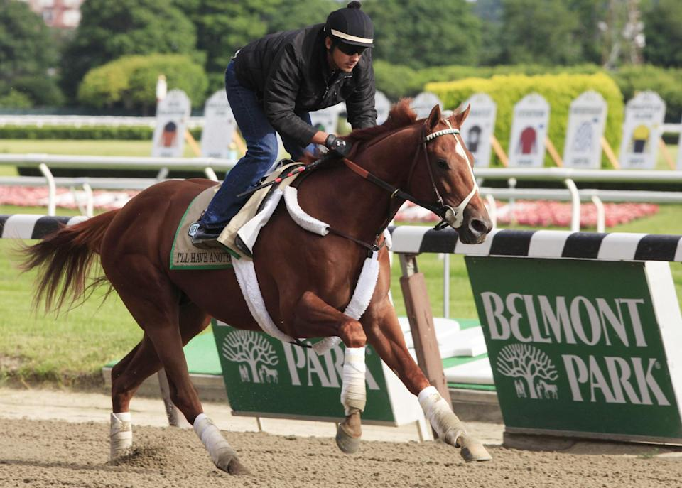 Exercise rider Jonny Garcia guides I'll Have Another during a morning workout at Belmont Park in Elmont, N.Y., Tuesday, June 5, 2012. I'll Have Another is trying to win the Triple Crown in Saturday's Belmont Stakes. (AP Photo/Mark Lennihan)