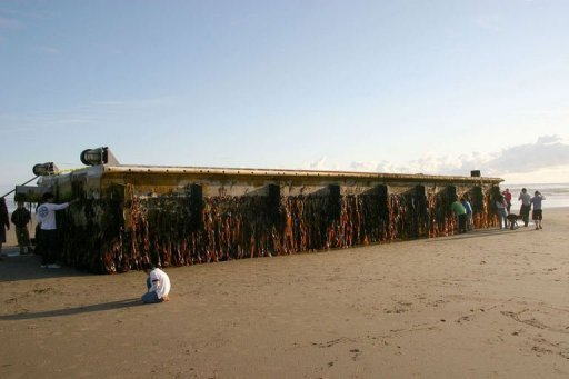 A huge floating dock cast adrift by Japan's killer tsunami has washed up on an Oregon beach