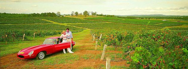 A romantic drive through Hunter Valley, Australia