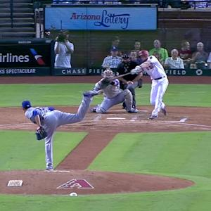 Owings' sac fly