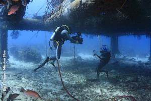 Underwater Movie Maker: Q&A With Shaun MacGillivray