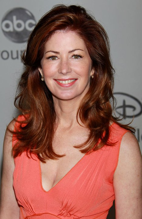 """Body of Proof's"" Dana Delany arrives at NBC Universal's 2010 TCA Summer Party on July 30, 2010 in Beverly Hills, California."
