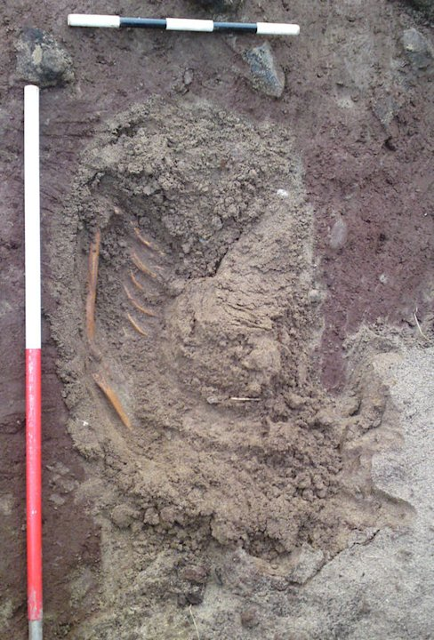 Storms Reveal Iron Age Skeleton