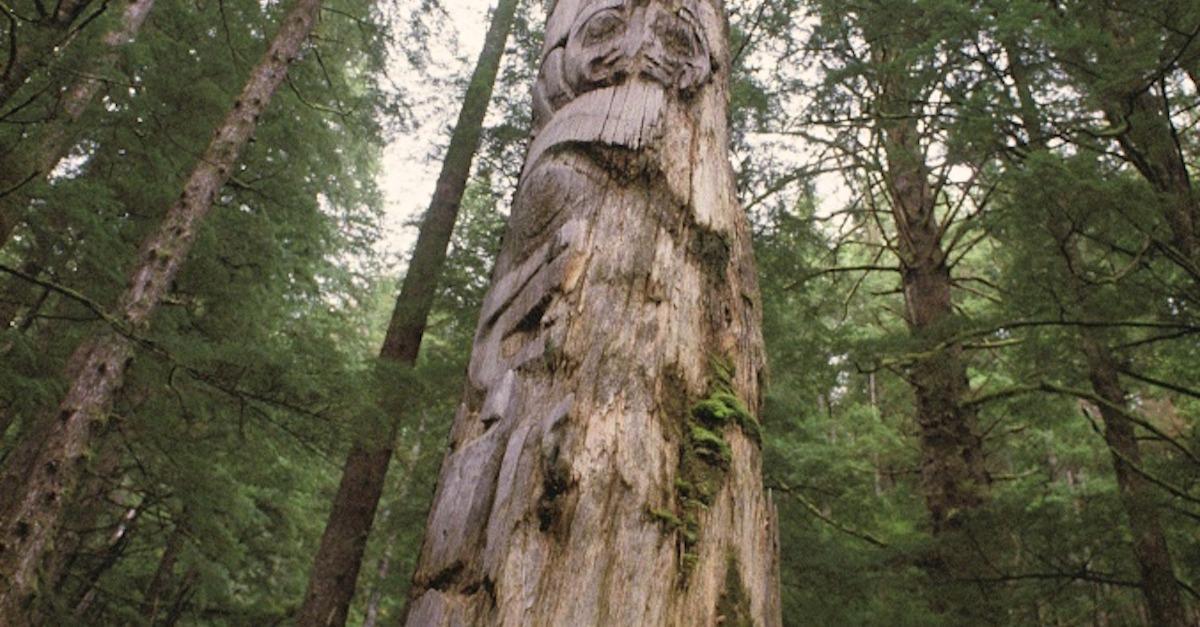 Tofino's Ancient Landscapes And Traditions