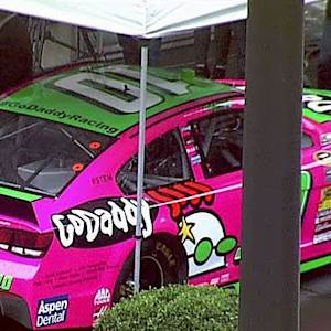 Danica Patrick goes pink
