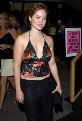 Erika Christensen at the Beverly Hills premiere of DreamWorks' The Terminal