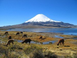 Parinacota Volcano in Chile