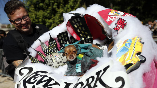 IMAGE DISTRIBUTED FOR BEGGIN' - Frida, a chihuahua, appears dressed as New York City during the Tompkins Square Halloween Dog Parade presented by Beggin' Saturday, Oct. 25, 2014 in New York. (Photo by Jason DeCrow/Invision for Beggin'/AP Images)
