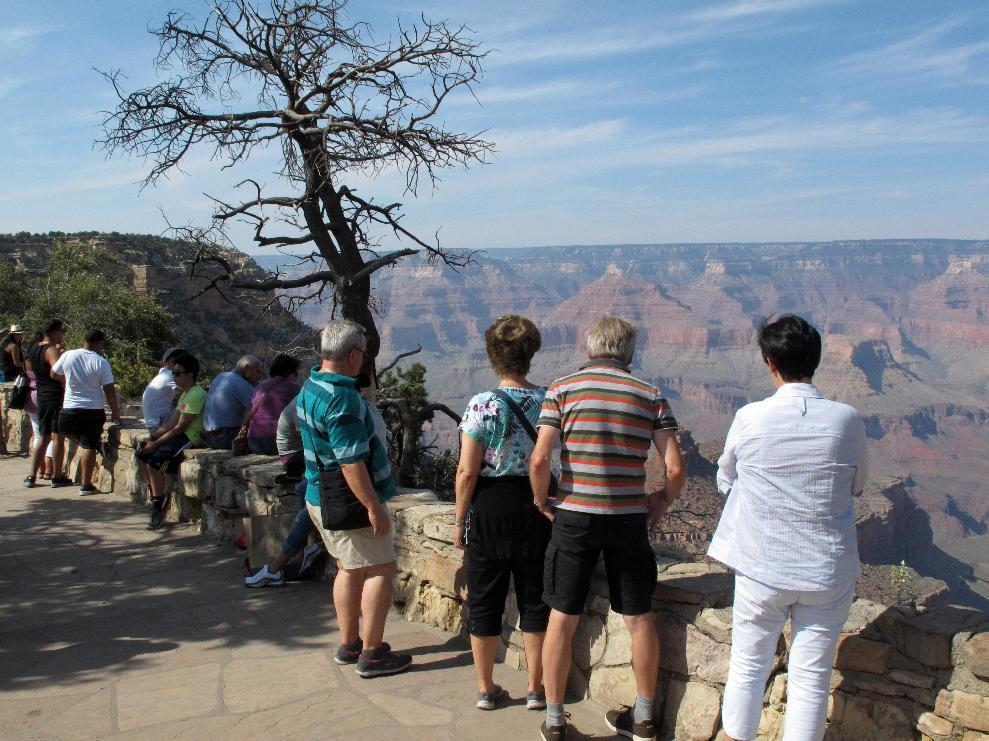 National parks seeing huge spikes in visitation this summer