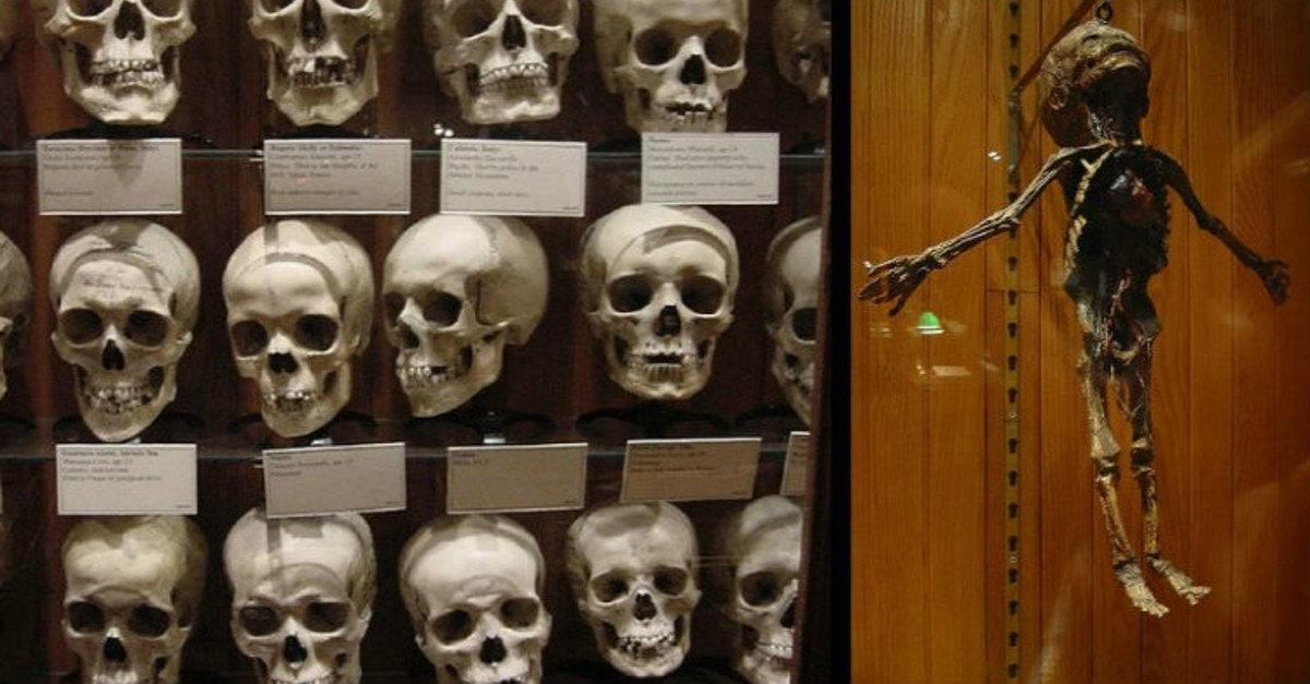 14 Bone-Chillingly Scary Places