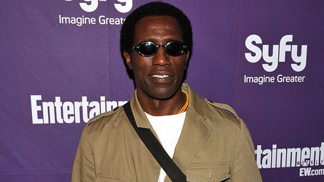 Wesley Snipes Out of Prison
