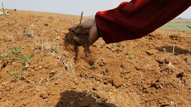 In this May 25, 2012 photo, a North Korean farmer sifts soil through his fingers in a dry corn field at a the Tokhae cooperative farm on the outskirts of  Nampho, North Korea. North Korea is reporting a serious drought that could worsen already critical food shortages, but help is unlikely to come from the United States and South Korea following Pyongyang's widely criticized rocket launch.  (AP Photo/Kim Kwang Hyon)