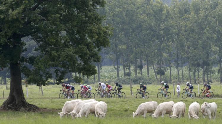 A breakaway group of riders cycles during the 145.5km 18th stage of the Tour de France cycling race between Pau and Hautacam in the French Pyrennes mountains
