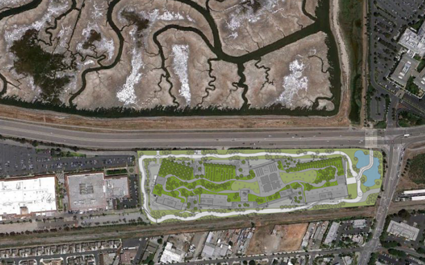How Green Is Facebook's Massive Green Roof?