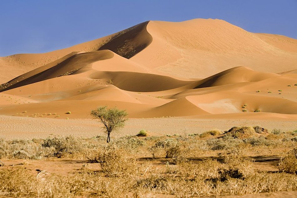 Travel Ethical Destinations Namibia