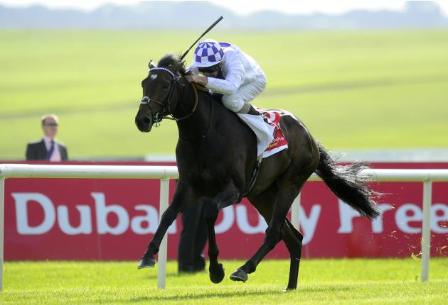 The Dubai Duty Free Irish derby