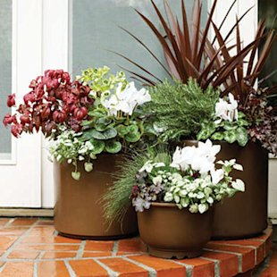 Dress a doorstep with containers