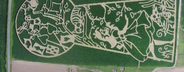 America's best corn maze continues to delight