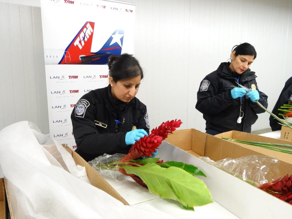 US inspectors ensure no nasty surprises on Valentine's Day