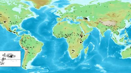 Languages May Be Shaped By Geography