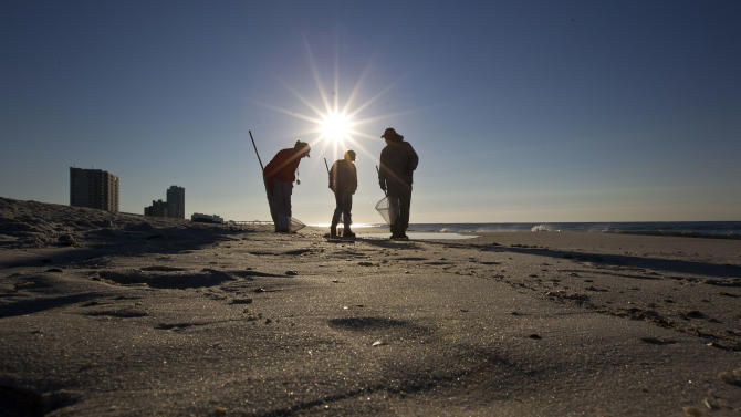 Cleanup crews search for oily tar balls along the beach in Gulf Shores, Ala., Wednesday, Sept. 7, 2011. City officials believe the tar balls are from last year's BP oil spill, and they were dredged up from the bottom by Tropical Storm Lee. They say tests will be performed to verify the source of the tar balls. (AP Photo/Dave Martin)